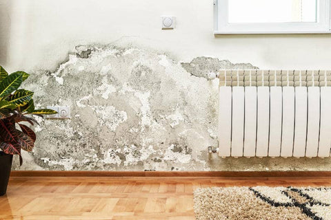 What Types of Water Damage are not Covered?