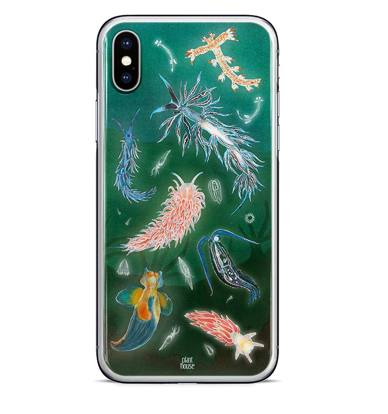 Sea Slugs (Nudibranchs)