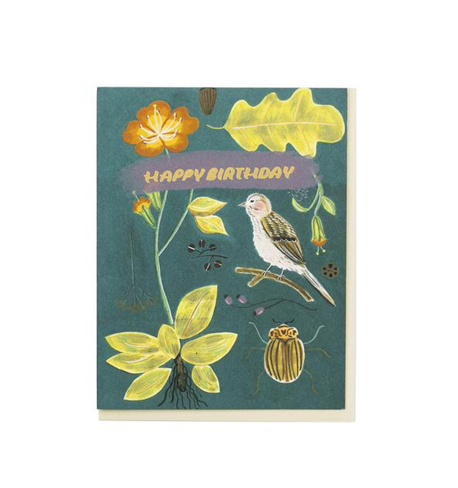Natural World Specimens Birthday