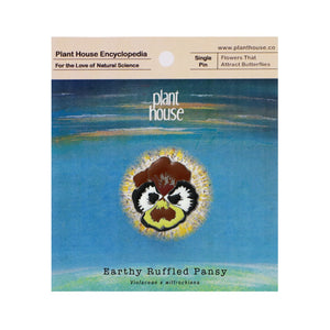 Earthy Ruffled Pansy - planthouse.co