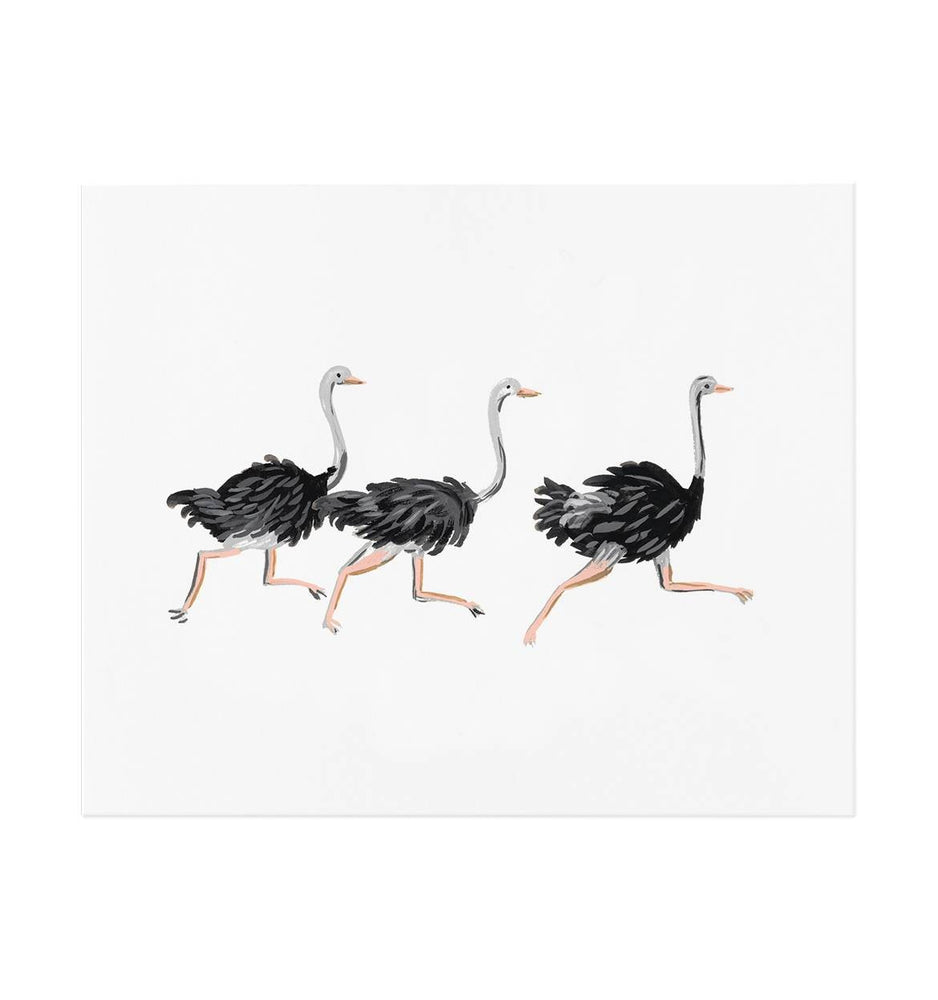 Load image into Gallery viewer, Ostrich