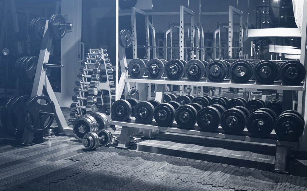 Dumbells Lined in the Gym