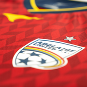 20-21 WWL Home Jersey - Adult (PRE-ORDER)