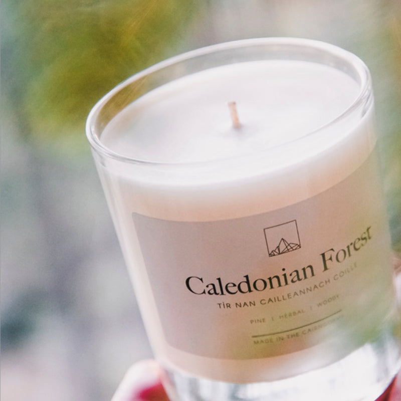 CALEDONIAN FOREST CANDLE