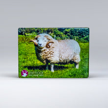 Load image into Gallery viewer, Exmoor Fridge Magnet of Horned Sheep