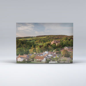 Post Card of Dunster, with its castle