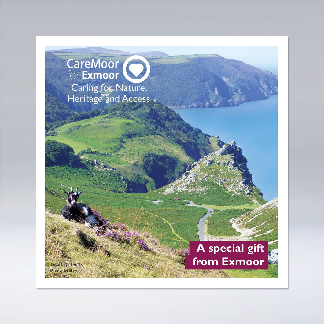 CareMoor for Exmoor Donation Gift Card, showing front cover