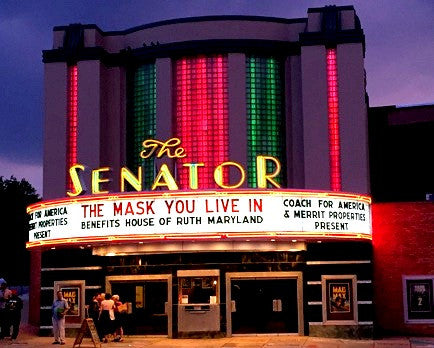The Mask You Live In Government Agency Screening License