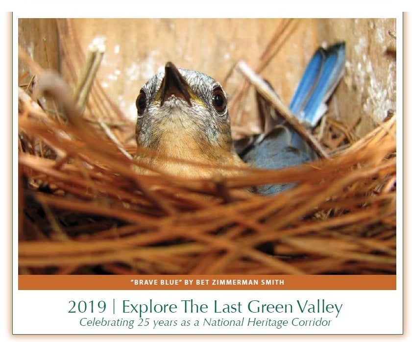 2019-Explore The Last Green Valley