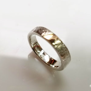 Textured silver band with gold detail