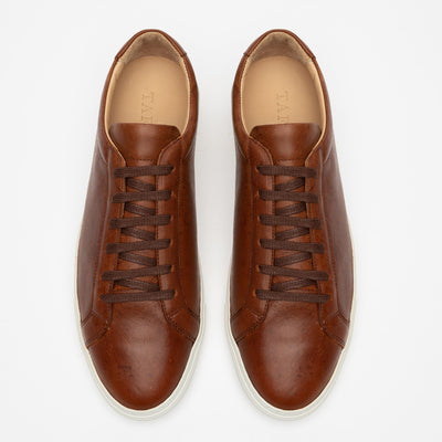 The Sneaker in Nutmeg