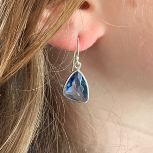 Wave Drop Earrings (4 colours)