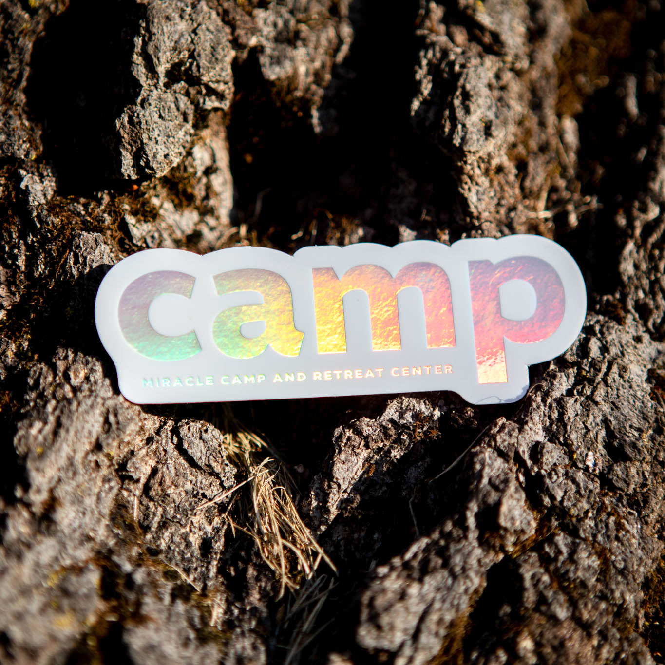 Holographic Camp Sticker