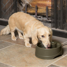 Load image into Gallery viewer, Drinkwell® Current Pet Fountain