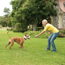 Load image into Gallery viewer, Stay+Play Wireless Fence™ Add-A-Dog® Extra Receiver Collar
