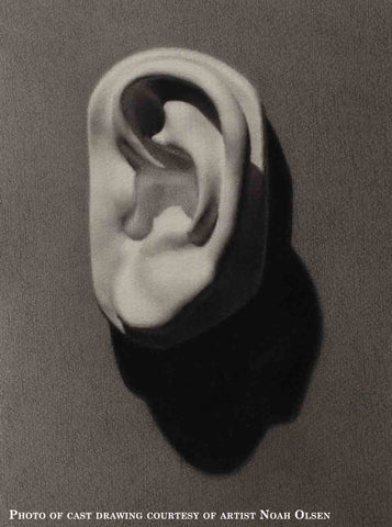 Photo of Cast Painting of Plaster Cast of left ear of Michelangelo's David on a gray background