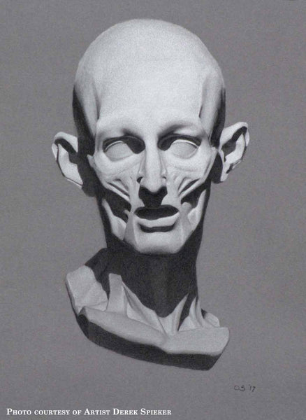 Cast Drawing of Anatomical Mask