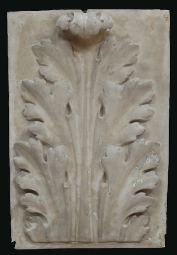 photo of plaster cast relief of upright, symmetrical acanthus leaf on a black background