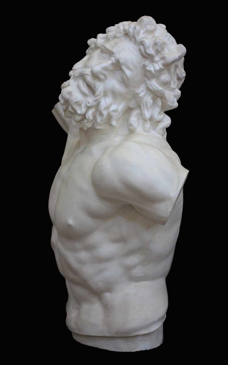 photo with black background of plaster cast of sculpted male torso and head with curly hair and beard, namely Laocoon