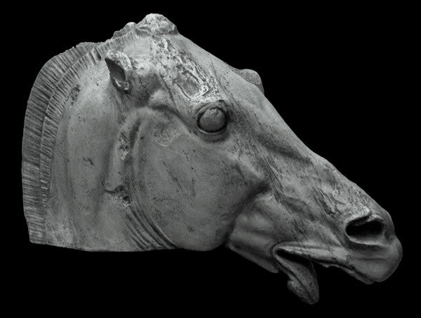 photo of plaster cast sculpture of horse's head with open mouth