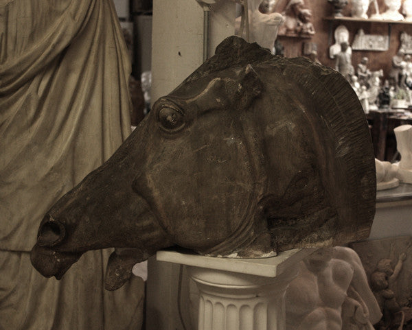 photo of plaster cast sculpture of horse's head with open mouth on a pedestal surrounded by other plaster casts