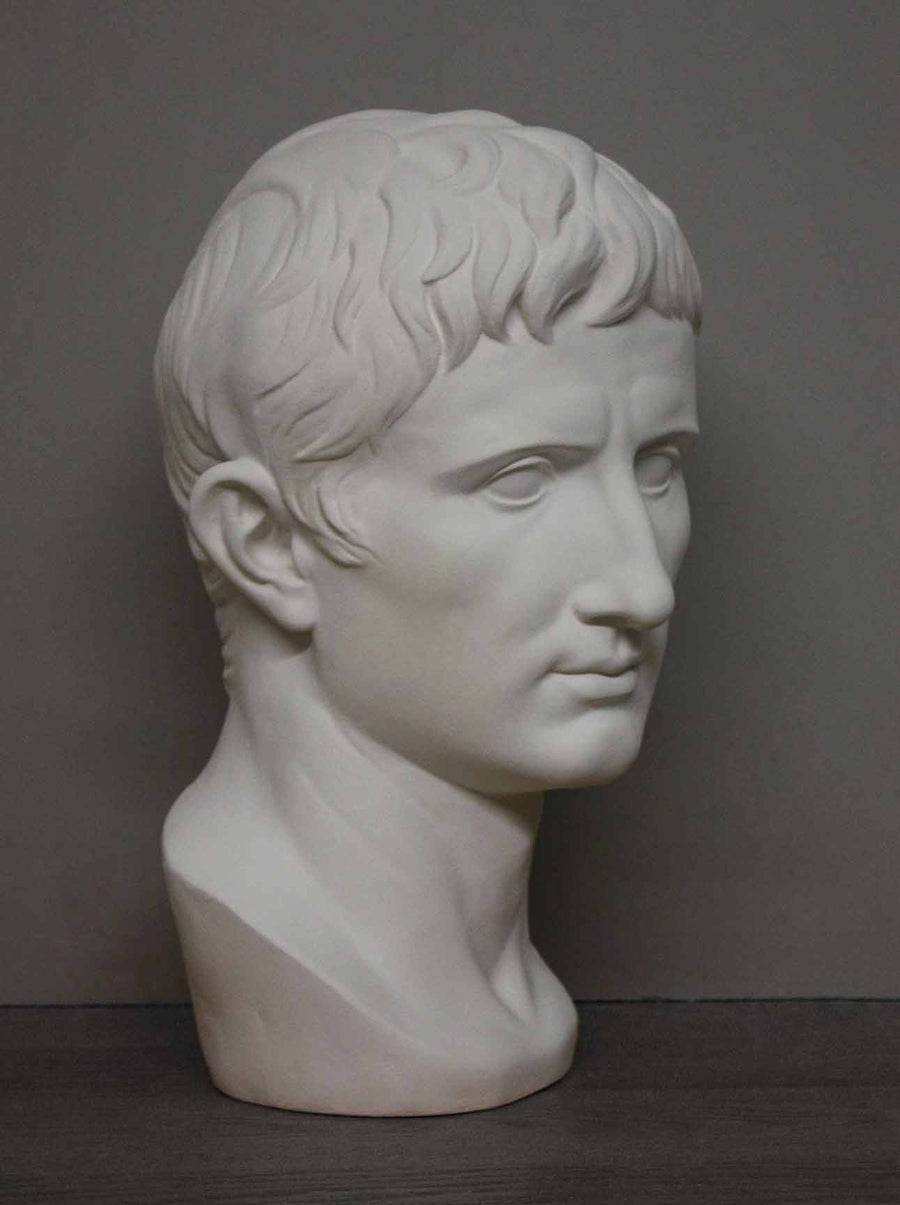photo of plaster cast bust of man, namely Augustus Caesar, with gray background