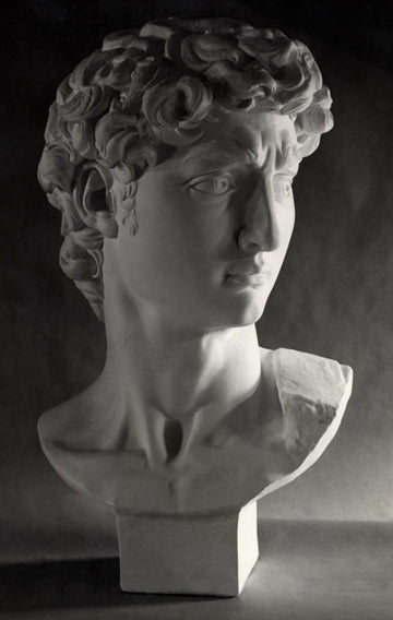 Bust of David - Item #99