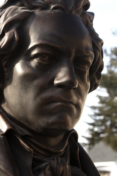 photo of bronze-colored plaster cast sculpture bust of man, namely Beethoven, with neckerchief with sky and trees in background