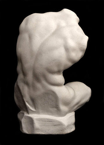 Belvedere Torso (Reduction) - Item #115