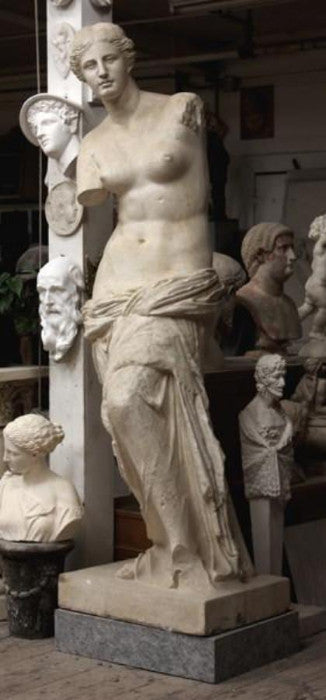 Photo of plaster cast sculpture of standing figure of Venus partially nude in gallery with more casts