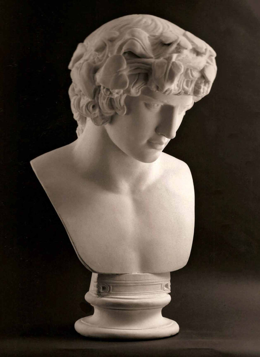 photo with black background of plaster cast of male bust of Antinous with crown of leaves