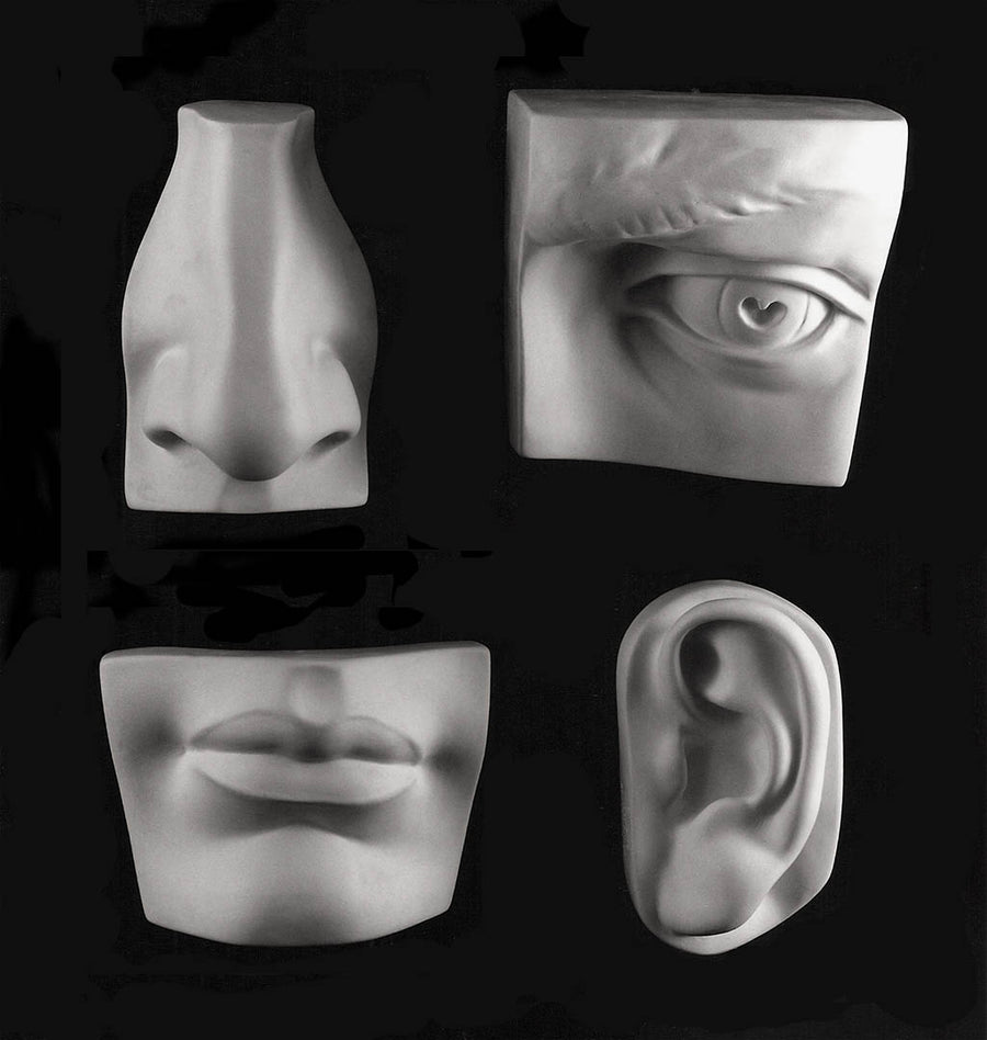 Photo of four plaster casts from a sculpture's head including left eye, left ear, nose, and mouth on a black background