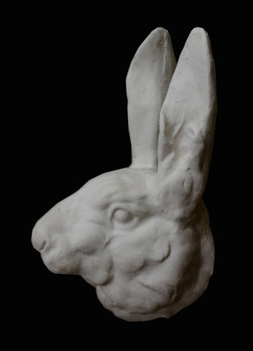 Rabbit Head - Item #174
