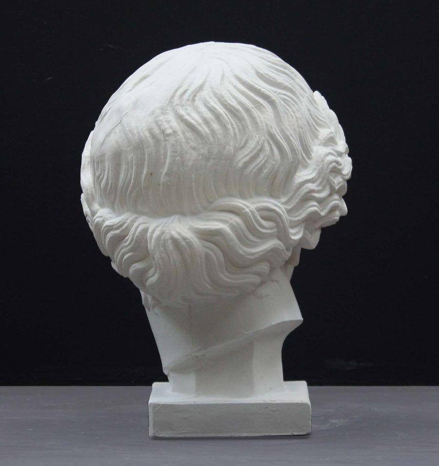 photo of plaster cast of sculpture of an Amazon head- female with pulled-back wavy hair on dark gray background
