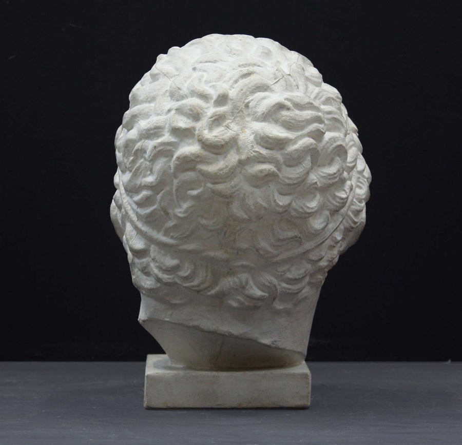 photo of plaster cast sculpture of head of Lansdowne Hercules with curly hair and headpiece on dark gray background