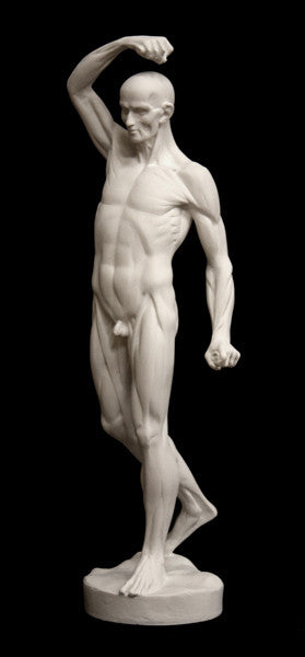 Anatomy of Man 1 Sculpture for Sale, Item #613 | The Giust Gallery