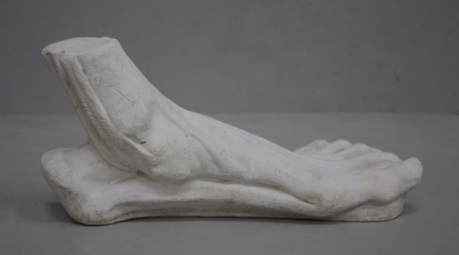 photo with gray background of plaster cast sculpture of flayed left foot on panel