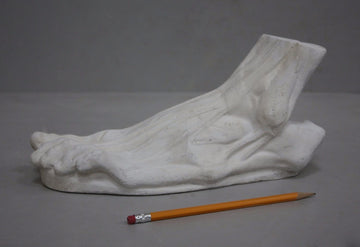 photo with gray background of plaster cast sculpture of flayed left foot on panel with yellow pencil beside it
