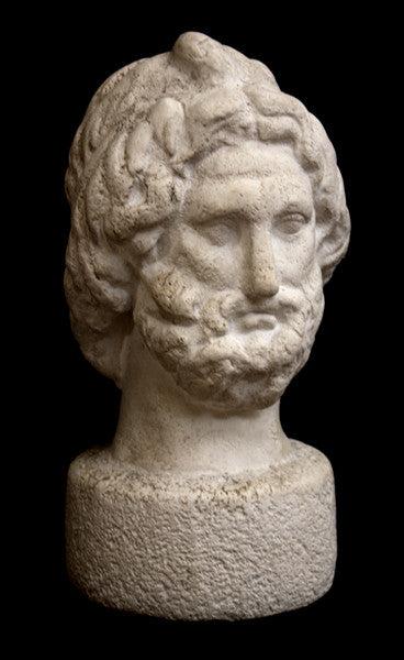 Photo with black background of plaster cast sculpture of male bust, namely the god Zeus, with curly hair and beard