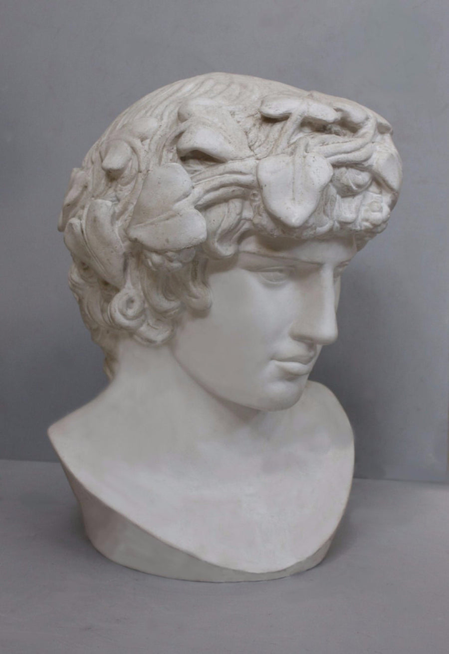 photo with gray background of plaster cast of male bust of Antinous with crown of leaves