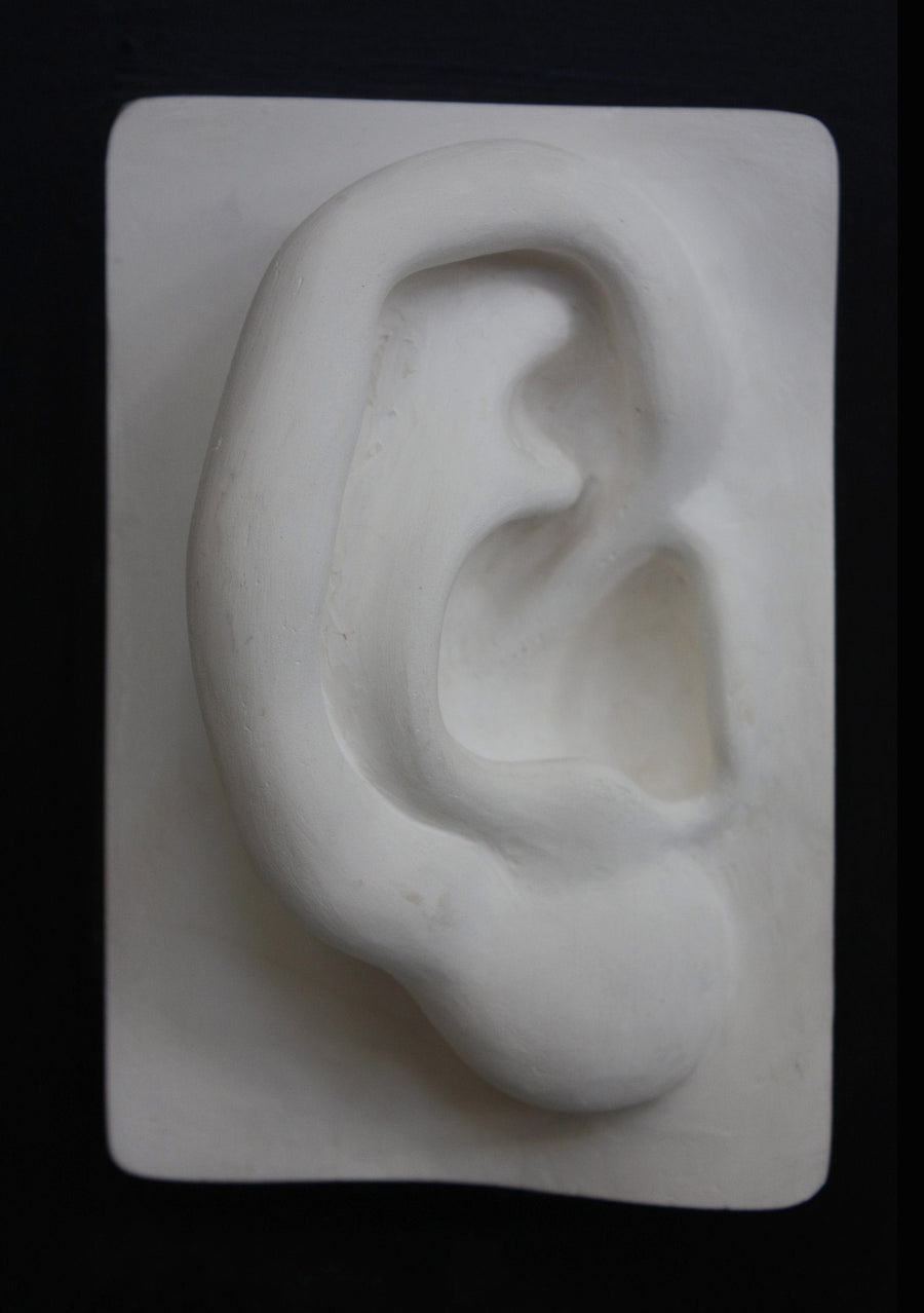 photo with black background of plaster cast of sculpted right ear on panel