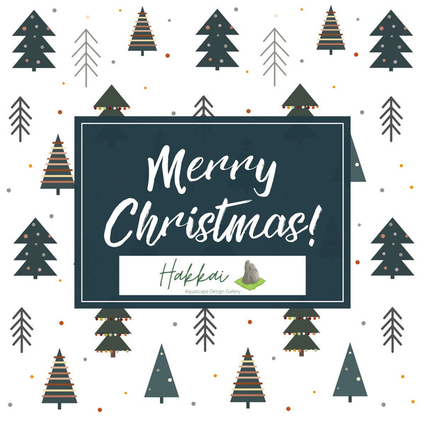 Merry Christmas From The Hakkai Team