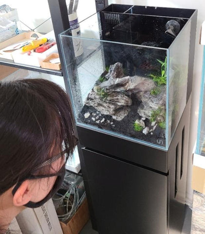 Deserie doing an aquascape build on this UNS 30A rimless tank at Hakkai Aquascape Gallery - San Diego, CA