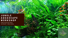 Load image into Gallery viewer, Jungle aquascape workshop at Hakkai Aquascape Gallery in Point Loma, San Diego, CA
