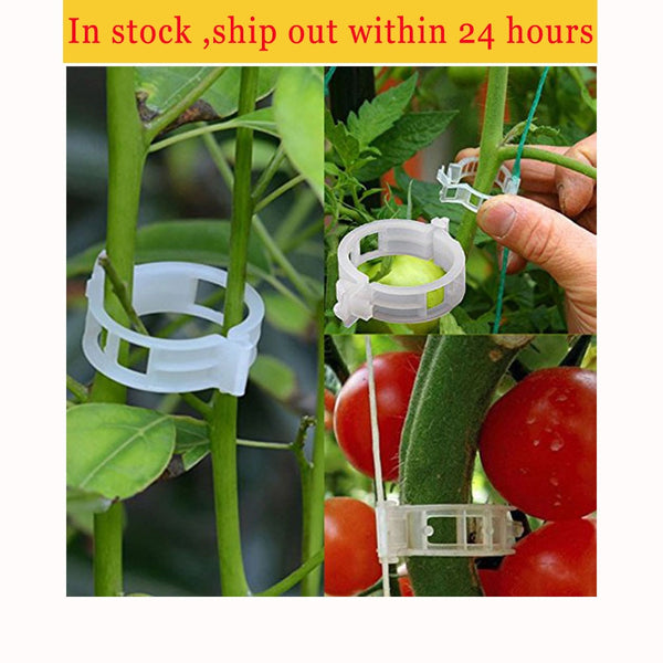 100pcs Reusable 25mm Plastic Plant Support Clips clamps For Plants Hanging
