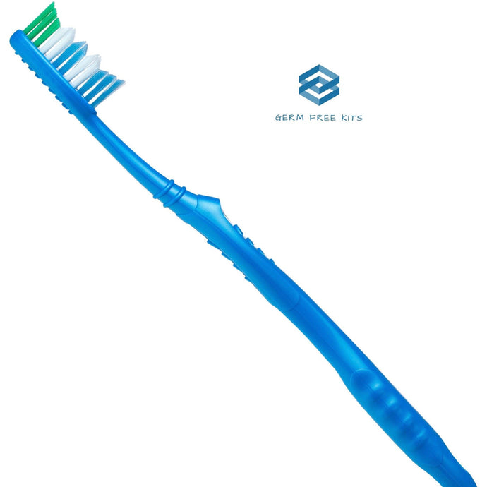 Disposable Travel Toothbrush