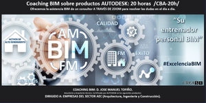 Coaching BIM AUTODESK 1:1. 20 horas