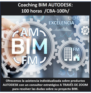 Coaching BIM AUTODESK 1:1. 100 horas