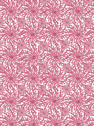 Coral Haze - Fuchsia - Wallpaper - Milola Design