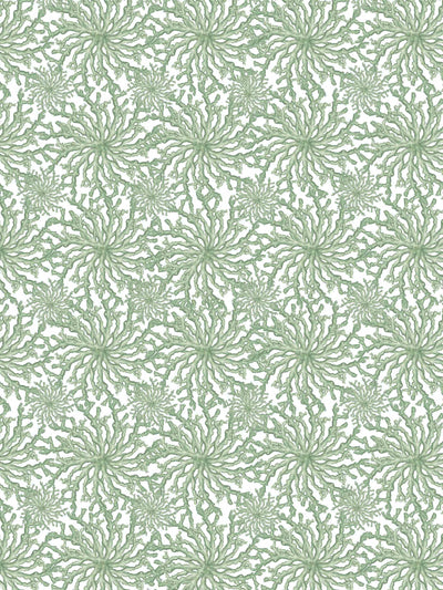Coral Haze - Sage Green - Wallpaper - Milola Design